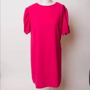NWOT Zara pink dress XXL
